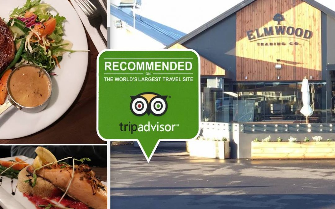 The Elmwood Trading Company Christchurch Review