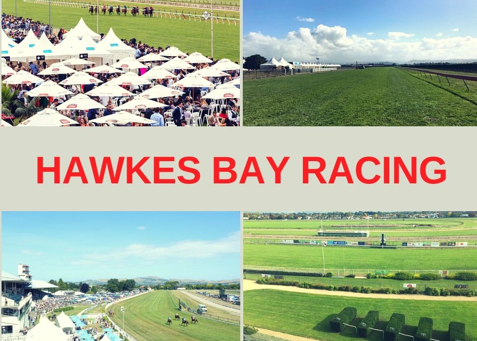 Hawkes Bay Racing Club Guide